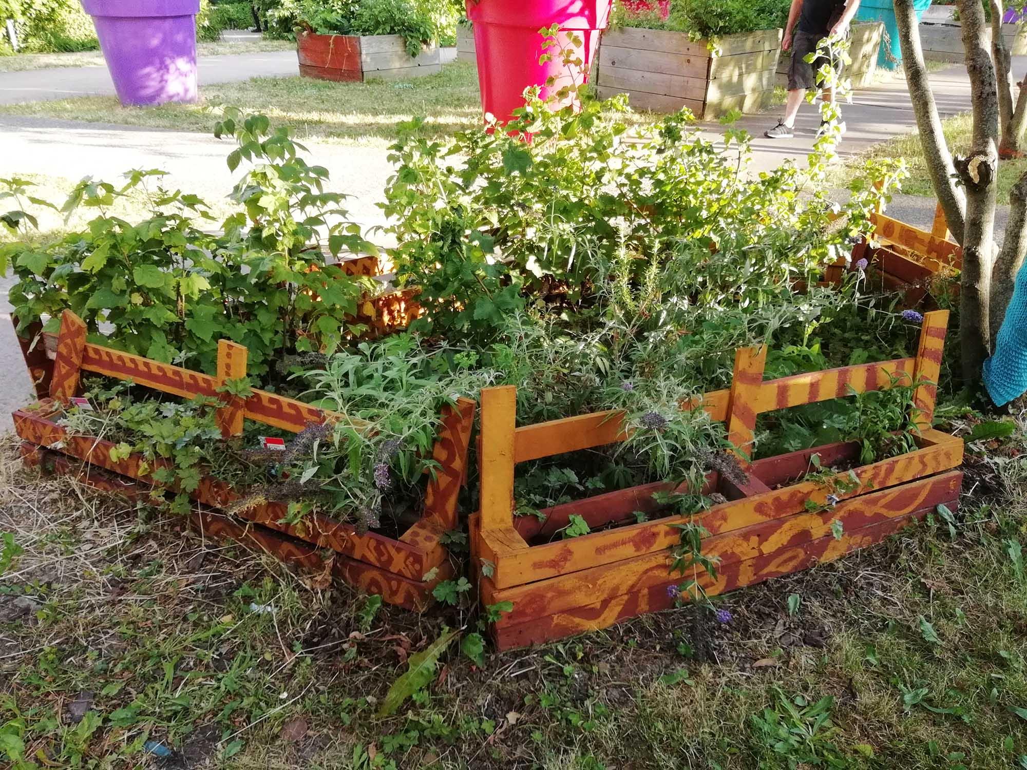 https://www.champigny94.fr/sites/default/files/mediatheque/urbanisme_habitat_cadre_de_vie/environnement/2018-07-plantes-mptba-02-cs-2k.jpg